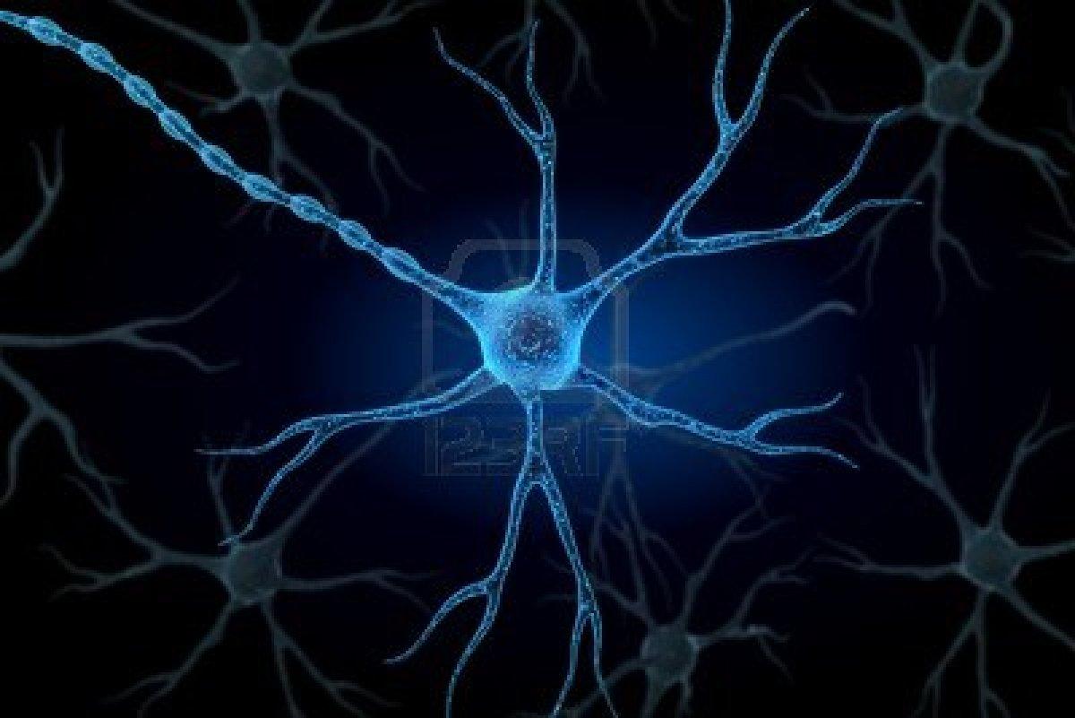 NeuroTagger